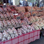 gourmet garlic growers list