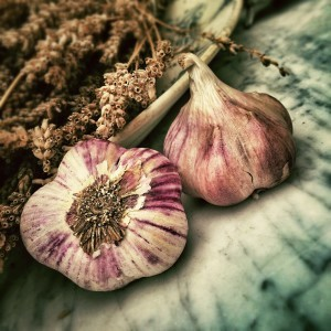 heirloom garlic